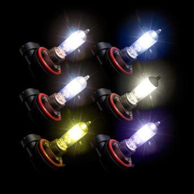 Putco Pure Halogen Bulbs